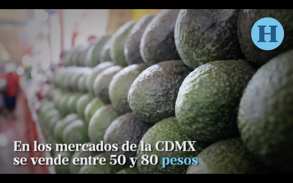 Sufre economía de mexicanos por precio del aguacate