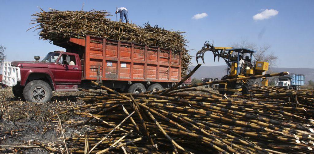 La industria azucarera estadounidense quería sacar a los cañeros mexicanos del mercado, aseguró la Cámara Nacional de las Industrias Azucarera y Alcoholera