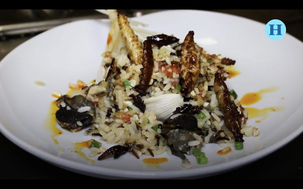 El chef Sergio Camacho nos enseña cómo hacer arroz con bichos