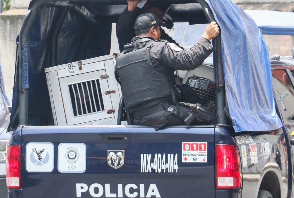 Momento en el que las autoridades se llevaron a los pitbull. CUARTOSCURO.