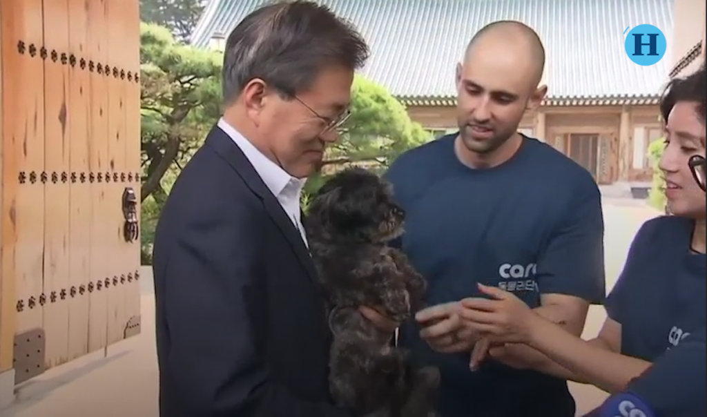 Presidente surcoreano adopta perro de un refugio
