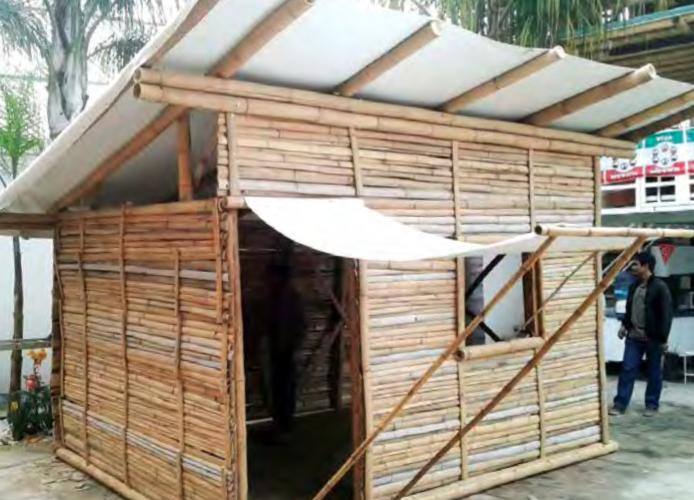 Utilizan bambú para fabricar casas temporales para damnificados