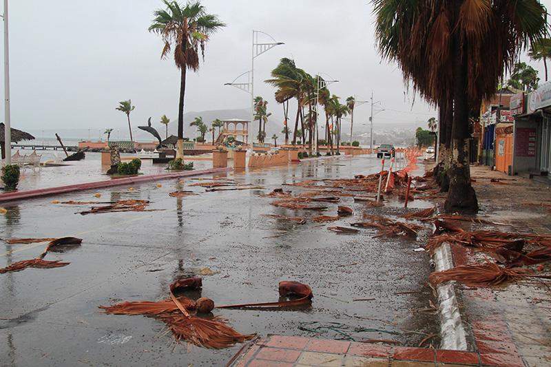 Baja California Sur inicia la rehabilitación tras el paso de Lidia