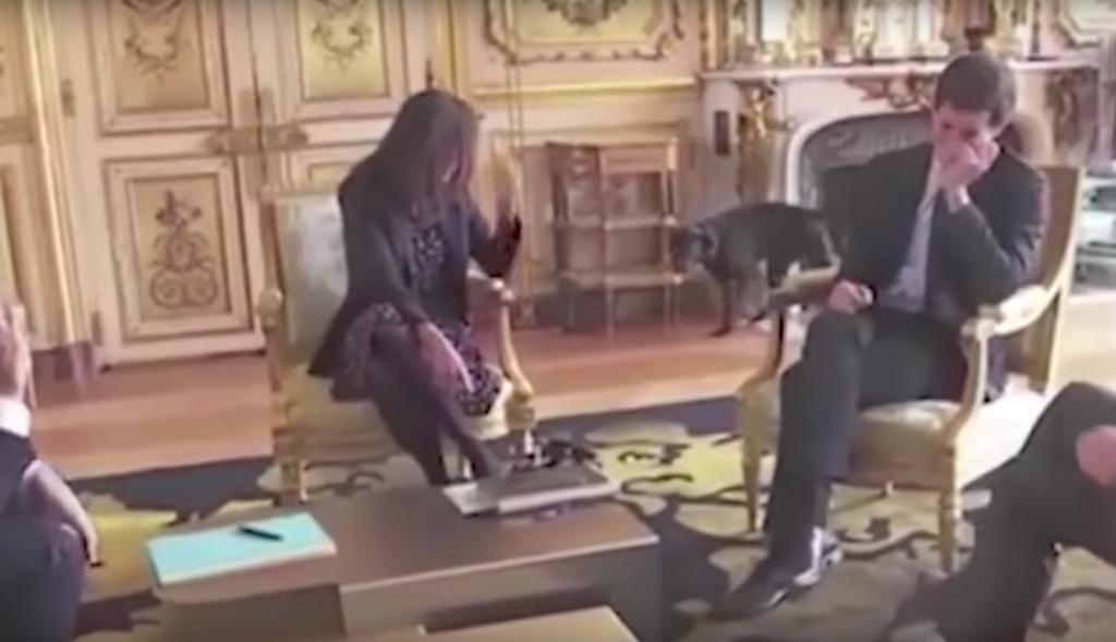 El perro del presidente Macron se orina en plena reunión oficial