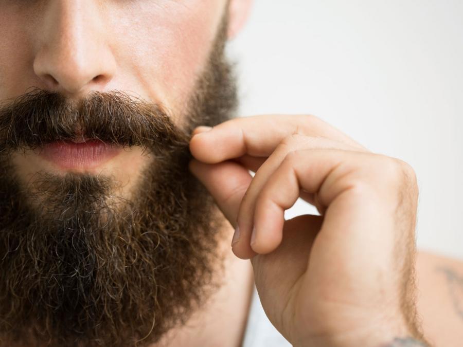El acordeón de @arkasmi: No-Shave November y Movember