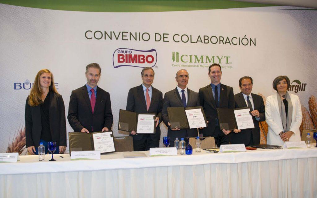 Bimbo impulsará la producción de trigo y maíz sustentable en México