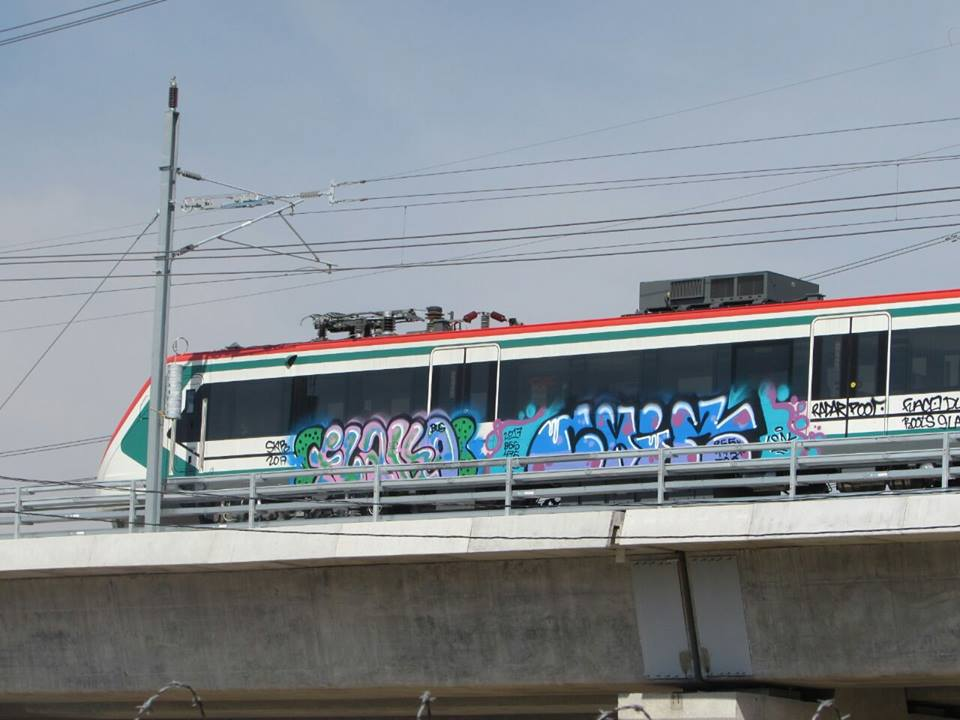 Grafitean vagones del Tren Interurbano México-Toluca