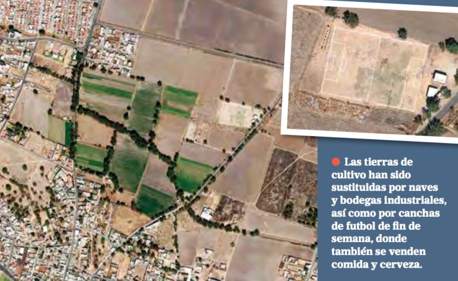 Campesinos rentan sus parcelas para convertirlas en canchas de futbol