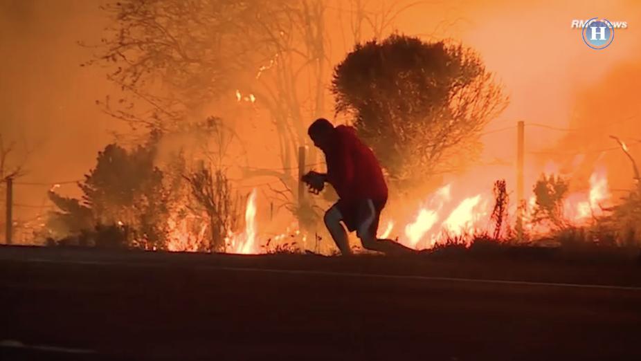 Hombre rescata a un conejo de incendio en California