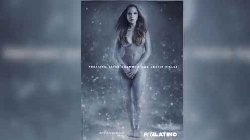 FOTOS Y VIDEO: Kate del Castillo se desnuda por una buena causa