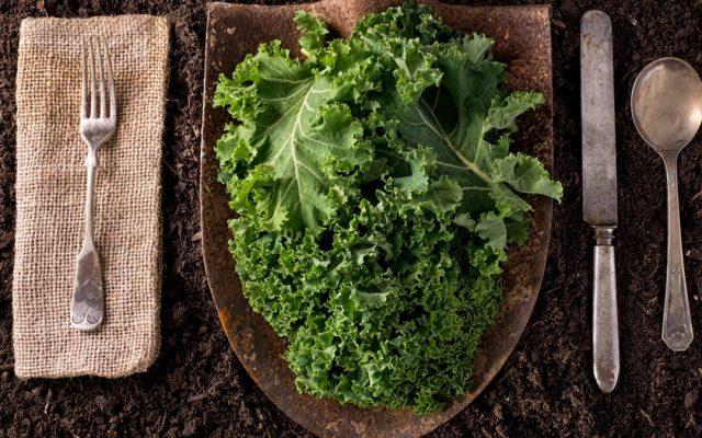 #JuevesInternacional Kale o col rizada
