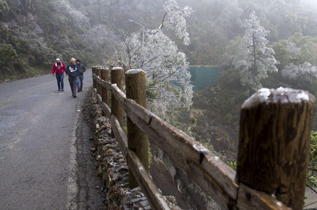 Inmediaciones del parque ecológico de reserva natural Chipinque, Nuevo León. FOTO CUARTOSCURO