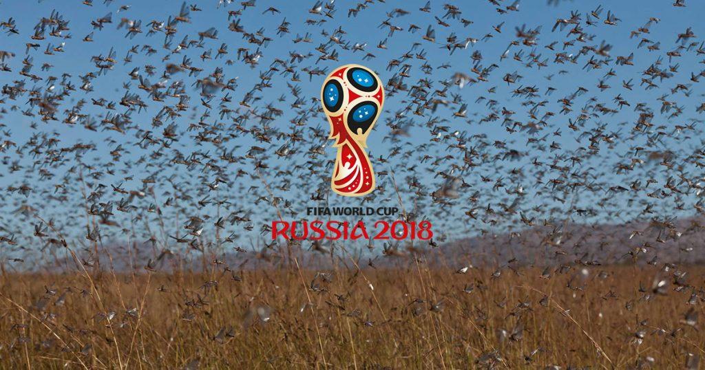 Pyotr Chekmarev, jefe del departamento de cultivos agrícolas del Ministerio de Agricultura, anticipa un posible ataque de enjambres de langostas durante el Mundial