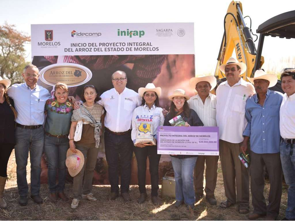 Aderezan con investigación e industrialización arroz de Morelos