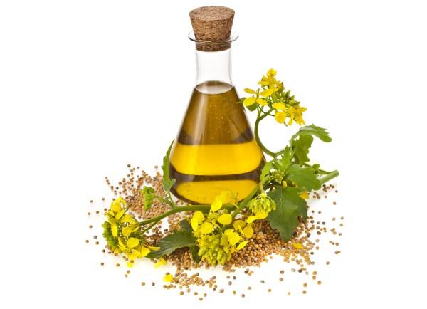 6 cosas que debes saber sobre el aceite de canola