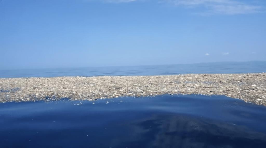 Una mancha de basura en el Caribe