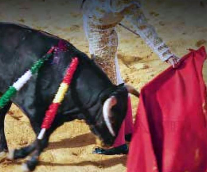 Fiesta brava enfrenta a IP y Toluca