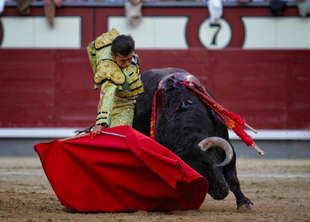 Foto: Cortesía Prensa Joselito Adame