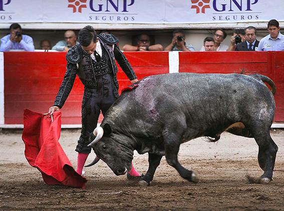 Fotos Landín-Miranda / Altoro México.