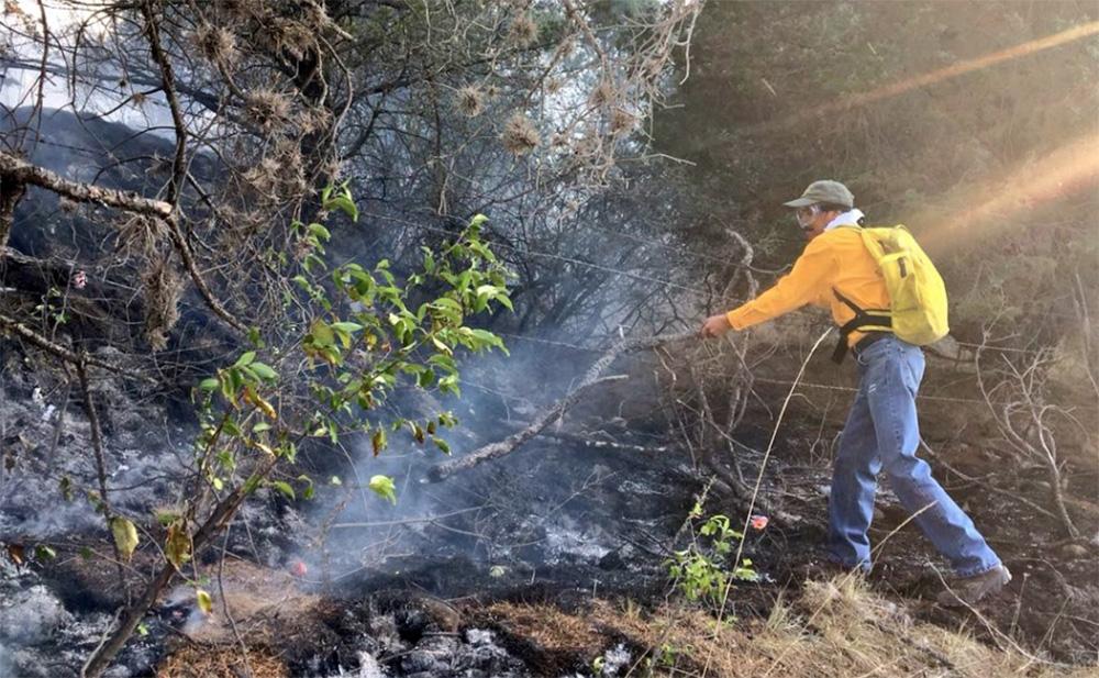 Suman 55 incendios forestales en 12 entidades de la República