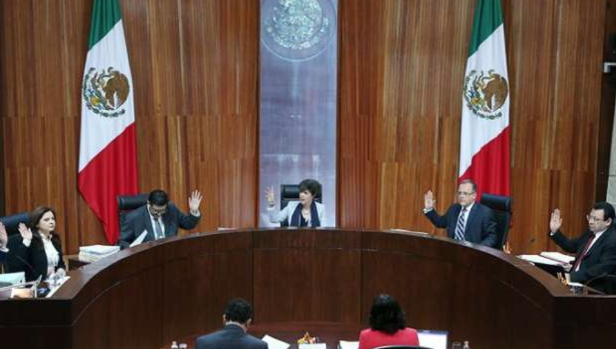 Tribunal Electoral multa al PRI por spot de Nestora Salgado
