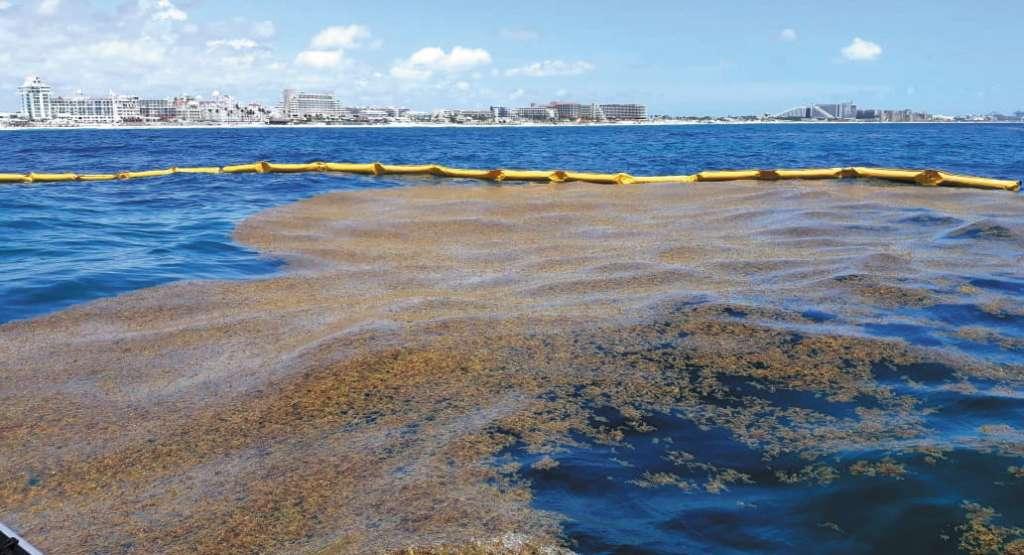 BARRERA. No es contaminante, resiste el oleaje y no daña el lecho marino. FOTOS: ESPECIAL