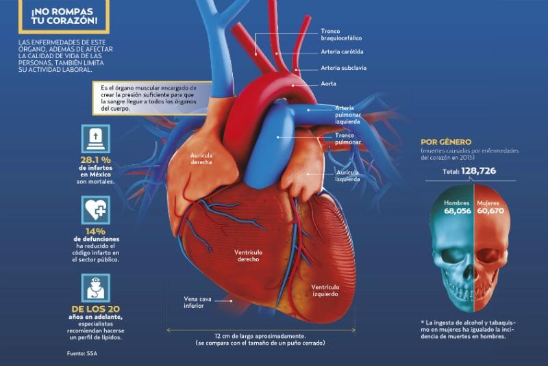 Alcohol aumenta infarto en jóvenes