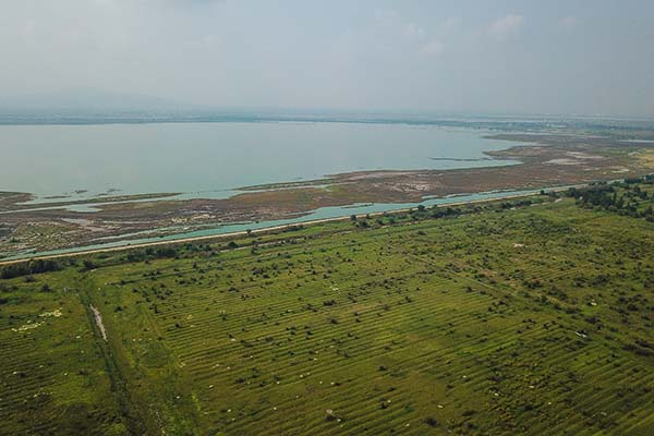 Vista del Lago Nagor Carrillo, el cual comenzó a ser secado como parte de la construcción del Nuevo Aeropuerto de la Ciudad de México. FOTO: CUARTOSCURO