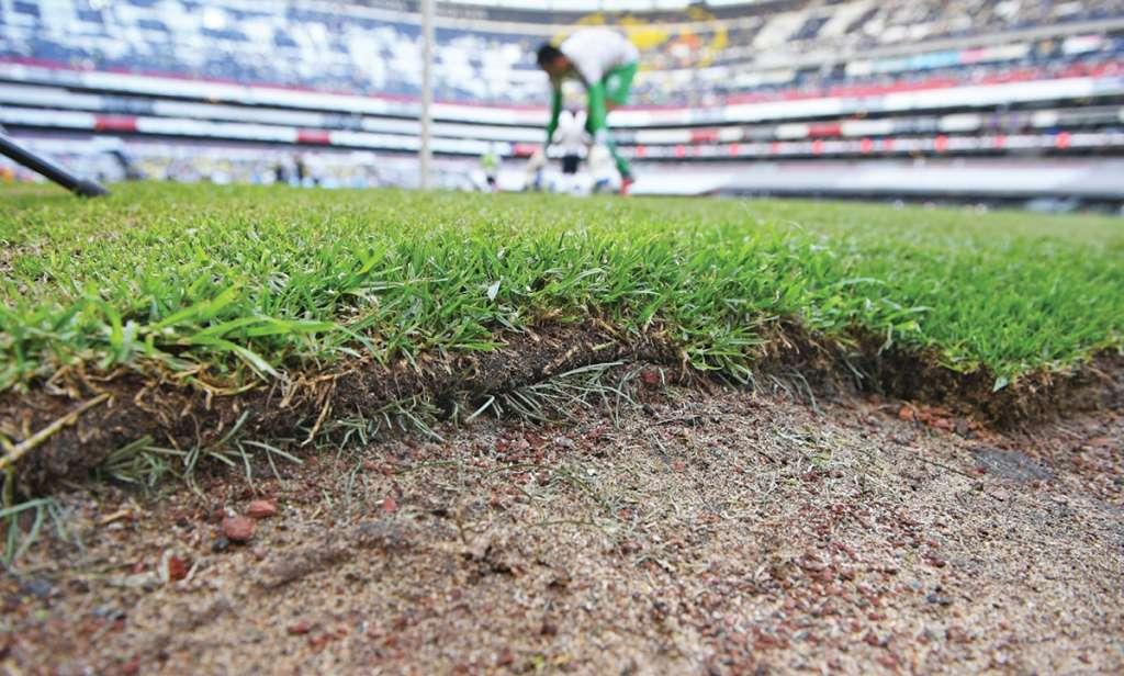 RESPIRO. El pasto de El Coloso de Santa Úrsula tuvo descanso desde el 2 de septiembre, gracias a la Fecha FIFA. Foto: LESLIE PÉREZ
