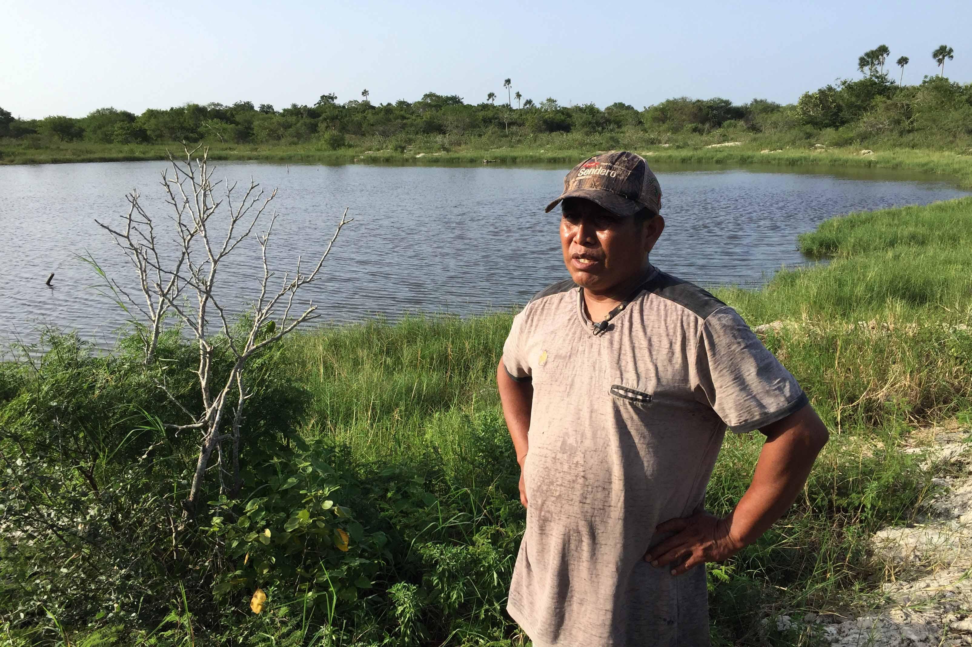 Marco Antonio Cupul - Delincuente Ecológico: abejas amenazadas 261018 - El Apicultor Español: Actitud y Aptitud Apícola