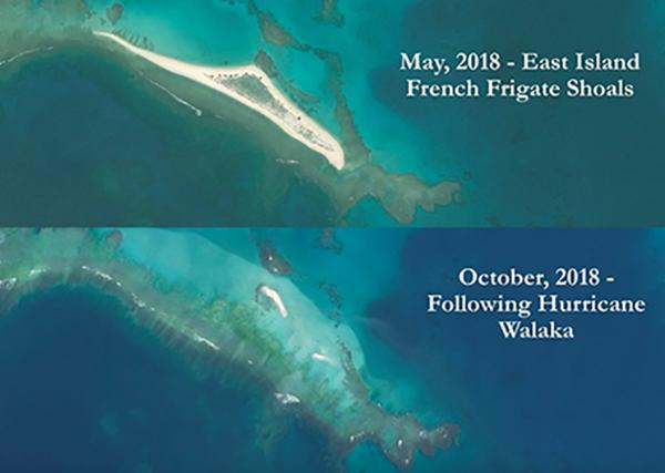 La isla del Este era un santuario natural donde desovaban tortugas marinas verdes.  Foto: @NathanEagle
