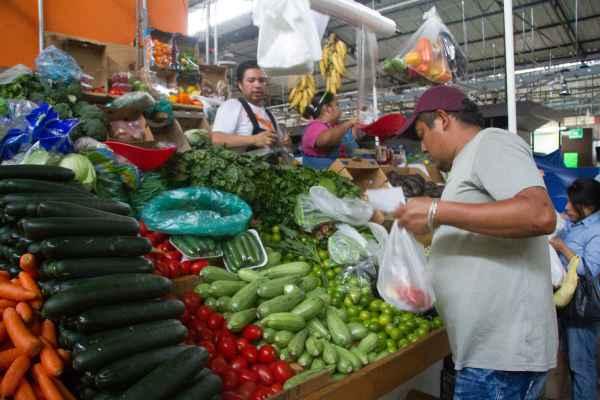 La producción de alimentos al cierre del año pasado alcanzó las 286 millones de toneladas. Foto: Archivo | Cuartoscuro