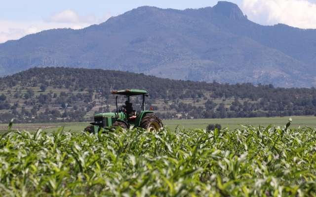 Para Sener todos los productos son importantes. FOTO: ARCHIVO/ CUARTOSCURO
