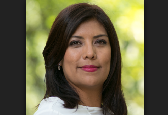 Carmen Julia Prudencio: La estructura de seguridad en el proceso de pacificación de México
