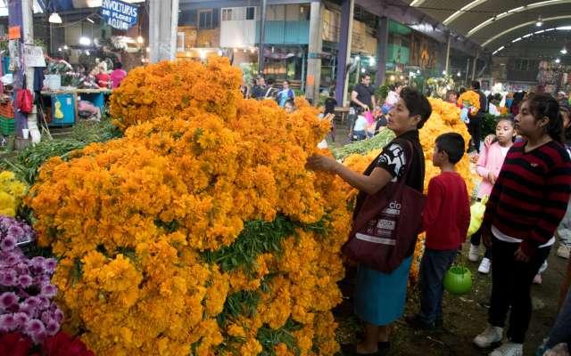 El Estado de México concentra 80 por ciento de la producción nacional de flores de ornato. Foto: Cuartoscuro