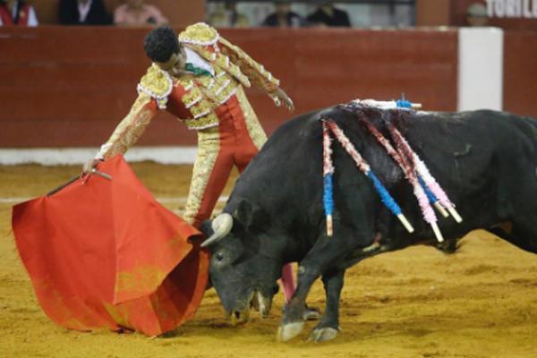Se despide una de las grandes figuras mexicanas del toreo. FOTO: @ignacio_garibay