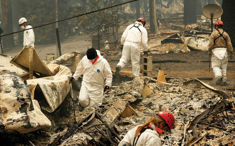 Especialistas buscan restos humanos por los incendios de California. Foto: AP