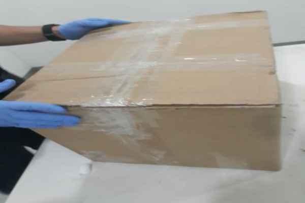 Elementos de la PF encontraron la droga tras revisiones aleatorias en las empresas de paquetería. Foto: Policía Federal
