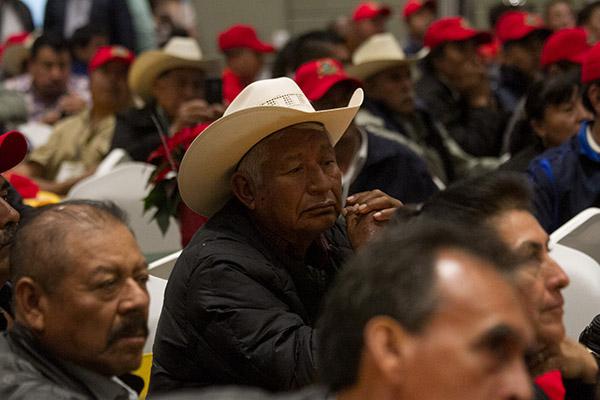 Uno de los principales apoyos que solicitan los productores del campo mexicano es precisamente tecnología en semillas para desarrollar cultivos más productivos.  FOTO: CUARTOSCURO