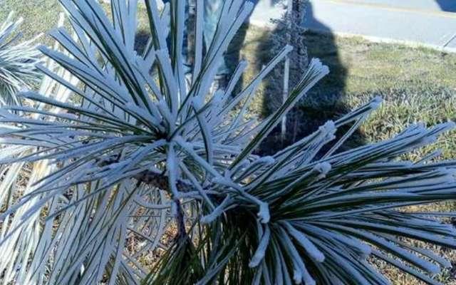 El frente frío 18 y una corriente polar provocaron este fenómeno el viernes. Foto: Notimex