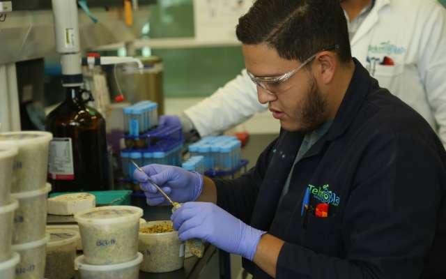 Procesos de sanidad alimentaria FOTO: JUAN JOSÉ   ESTRADA SERAFÍN /CUARTOSCURO.COM