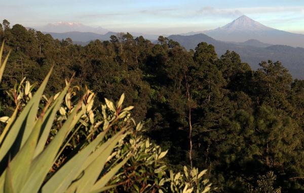 El domingo el coloso también registró un sismo volcanotectónico de magnitud 2.1 Foto: Cuartoscuro