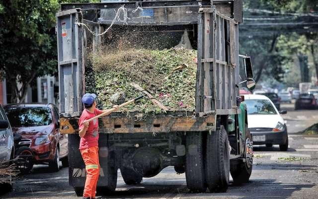 Trabajadores de poda y limpia de las alcaldías de la Ciudad de México trabajan como siempre, aunque el uso de vehículos se ha optimizado. Foto:  Nayeli Cruz