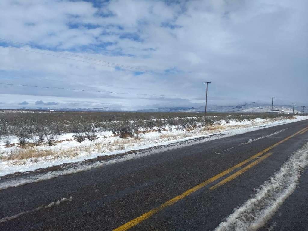 Nevadas afectan a miles de cultivos de hortalizas en Sonora