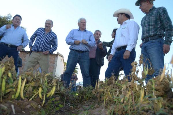 El titular de la SADER realizó un recorrido por algunas de las zonas agrícolas afectadas en el sur de la entidad. Foto: Especial