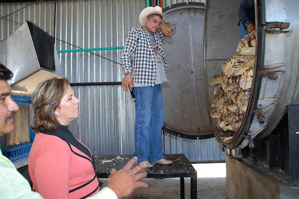 La región occidental de Jalisco, en cuyos municipios históricamente se ha producido y consumido. Foto: CUARTOSCURO.COM