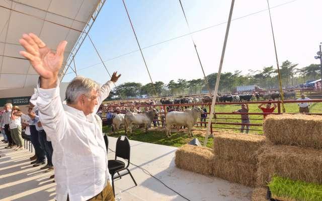El presidente Andrés Manuel López Obrador visitó ayer Macuspana, Tabasco, para entregar apoyos a ganaderos. FOTO: CUARTOSCURO