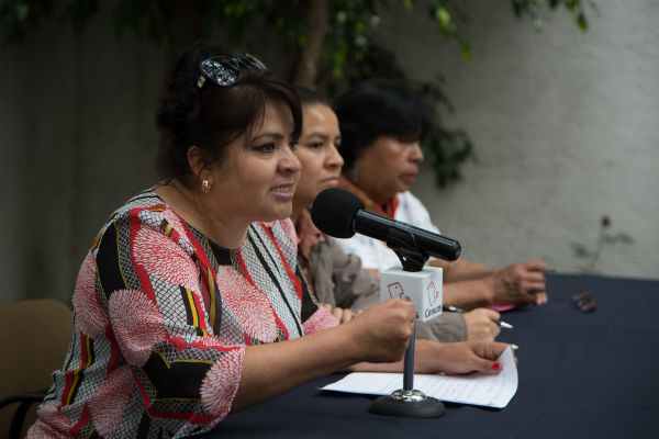 Salgado denunció que desde 2002 tiene registros de los abusos castrenses cometidos en contra de Inés Fernández y Valentina Rosendo