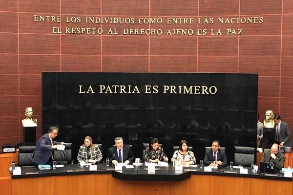 González Pérez participó este martes en las audiencias públicas en materia de Guardia Nacional convocadas por la Junta de Coordinación Política del Senado de la República. Foto: Cuartoscuro