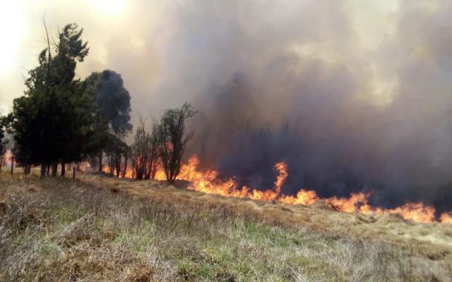 La semana pasada se registró un incendio también en Xochimilco. FOTO: ESPECIAL